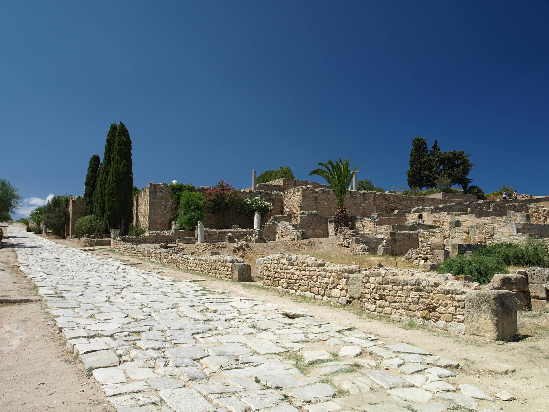 Roman road with ruins at Carthage
